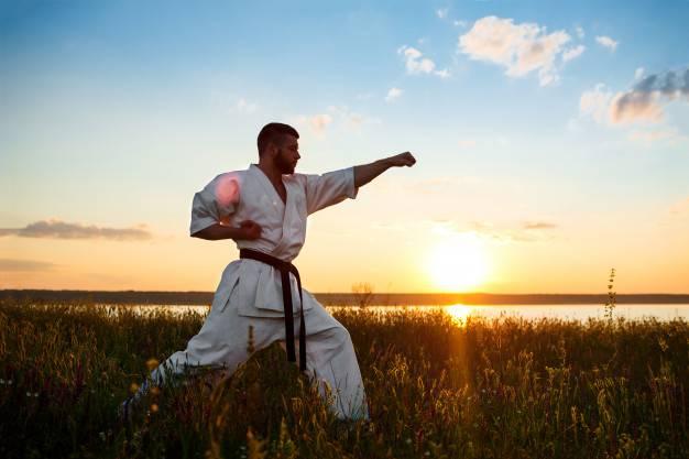 کاراته و تکواندو