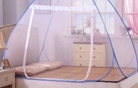 روش هایی برای از بین بردن حشرات از خانه!