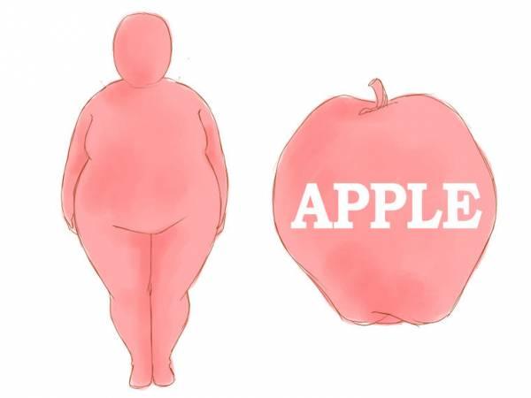 اندام سیب شکل