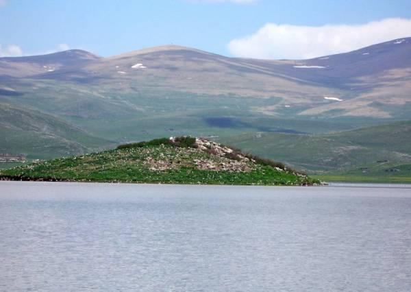 دریاچه آرپی