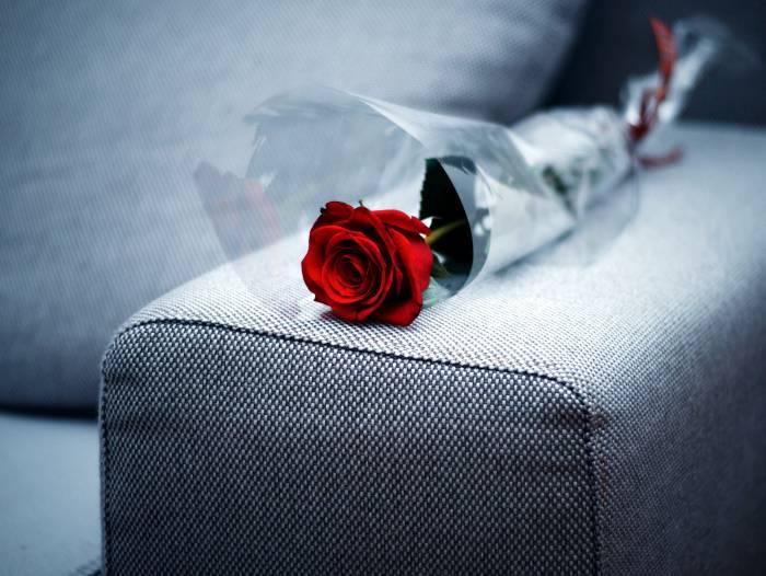 ماندگاری گل رز